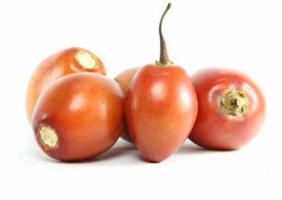 Tomate-de-arbol-organico